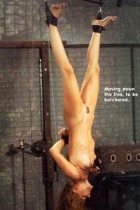striptease suomi www  sex